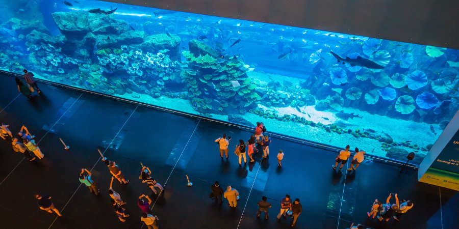 Mega acquario in uno shopping-center