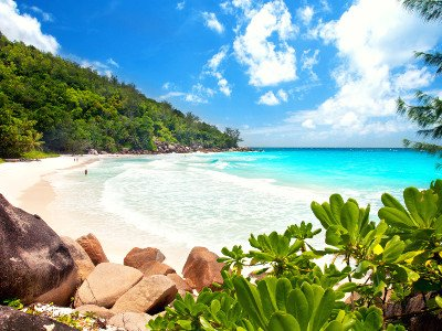 SEYCHELLES ALTERNATIVE